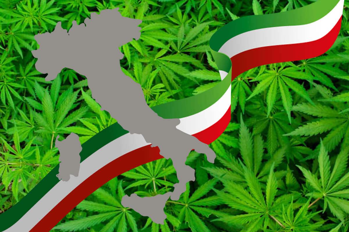 Situazione Legislativa Cannabis Light in Italia [aggiornamento 2020]