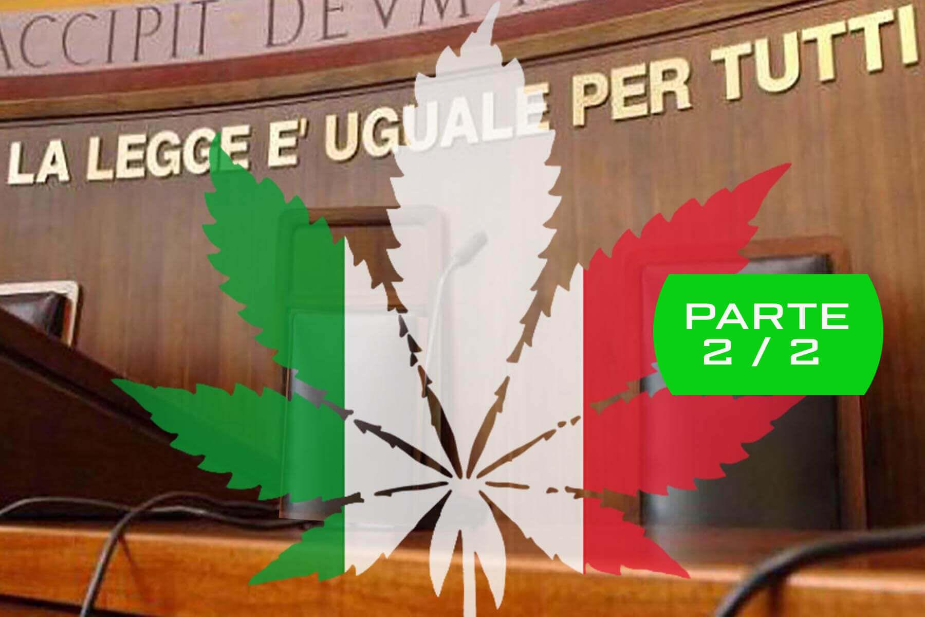 Cannabis Light in Italia: Aggiornamento 2021 sulla Situazione Legislativa Italiana - Parte 2/2